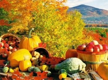 fall-harvest-350x262