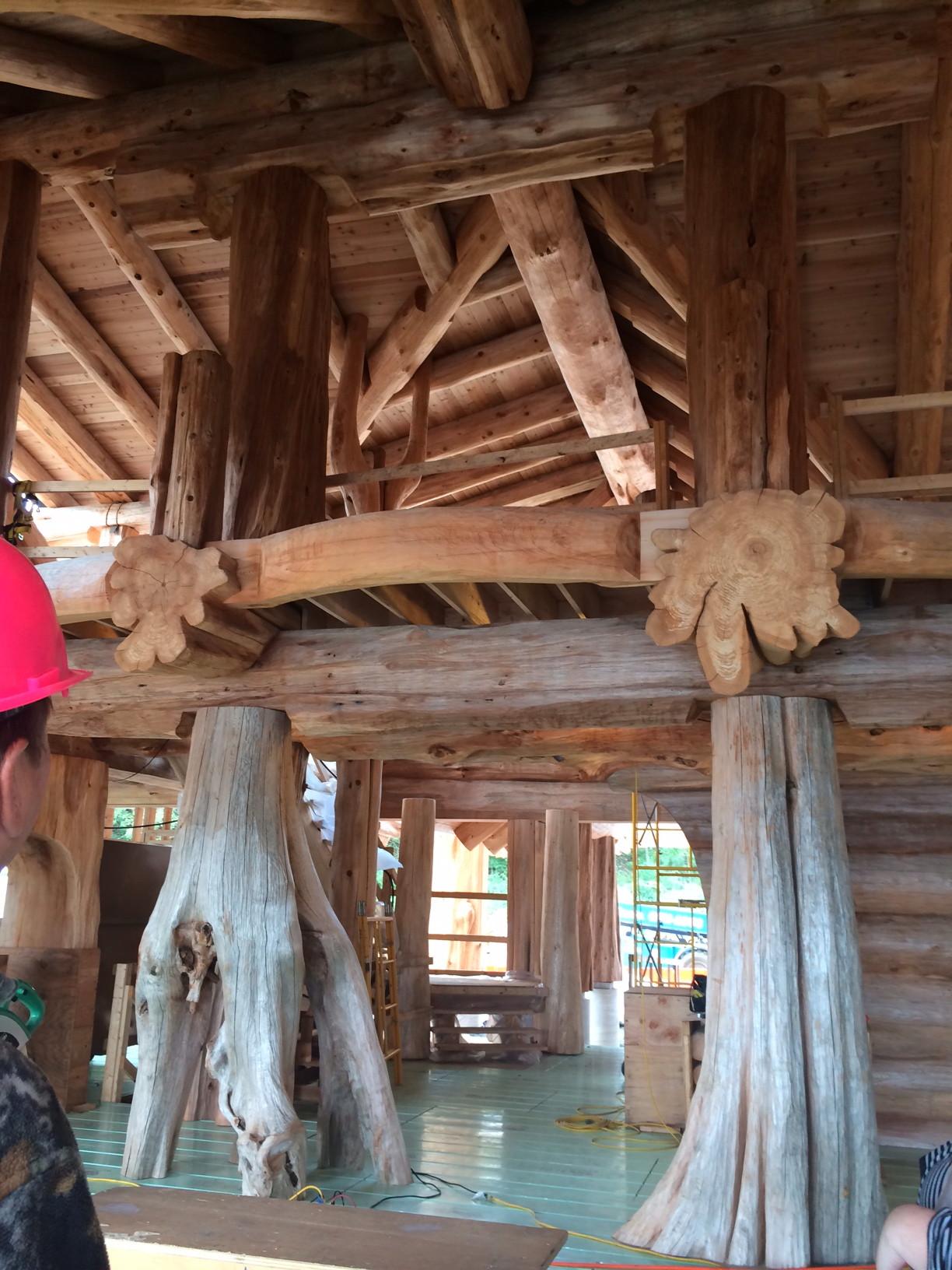 Tree Trunks Inside Log Home